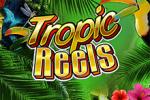 Игровой автомат Tropic Reels онлайн в казино Вулкан